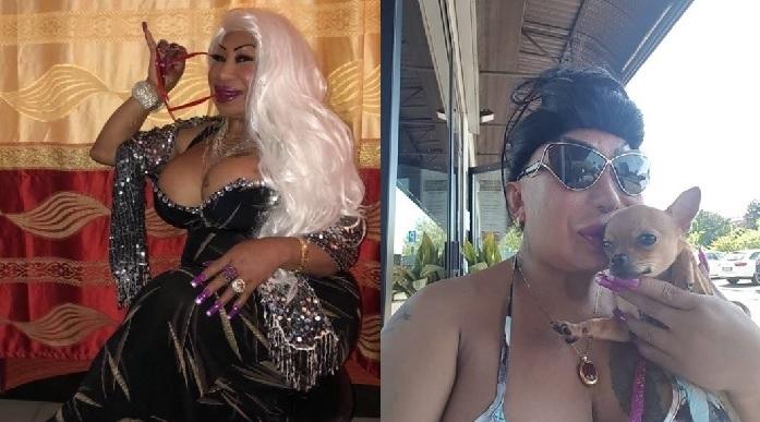 Travesti brasileira Bambola Star faz sucesso na internet