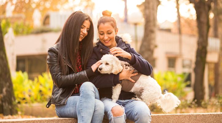 Lésbicas têm mais gatos e cães do que gays, diz pesquisa